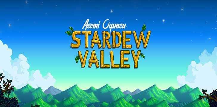 Stardew Valley'de ilk gün hızlı başlangıç